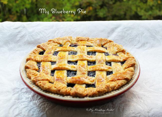 photo of my blueberry pie