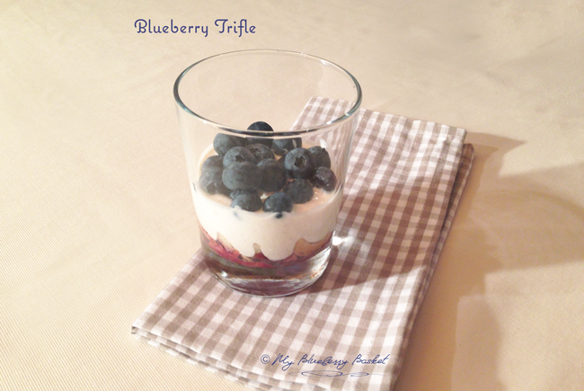 photo of blueberry trifle
