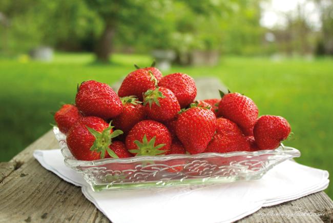 Foto von Teller Erdbeeren im Garten