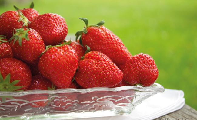 Foto von Erdbeeren im Garten
