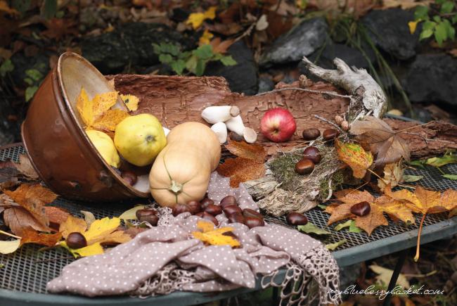 Foto Herbstimpressionen
