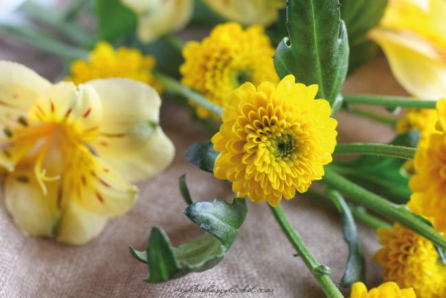 Foto Blumen